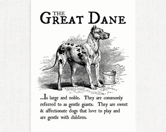 Great Dane - Vintage Inspired Wall Art Home Decor Print on Canvas Paper With Retro Illustration & Dog Breed Definition - Farmhouse Style