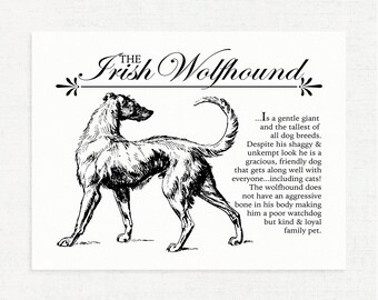 Irish Wolfhound - Vintage Inspired Wall Art Home Decor Print With Retro Illustration & Dog Breed Definition - Farmhouse Style Artwork