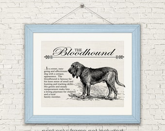 Bloodhound - Vintage Inspired Wall Art Home Decor Print on Canvas Paper With Retro Illustration & Dog Breed Definition - Farmhouse Style