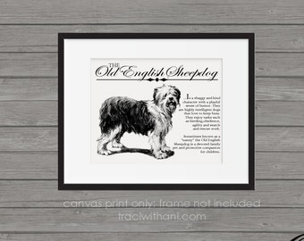 Old English Sheepdog (OES) - Retro Inspired Typography Wall Art & Home Decor Print on Canvas Paper With Dog Breed Description