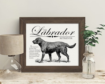 Labrador (Lab) - Typography Wall Art Print on Canvas Paper With Dog Breed Dictionary Style Definition - Dog Lover Gift - Decor