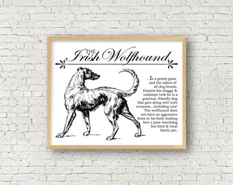 Irish Wolfhound - Vintage Inspired Wall Art Home Decor Print With Retro Illustration & Dog Breed Definition - Farmhouse Style Artwork