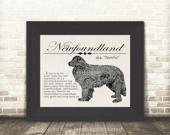 Newfoundland (Newfie) - Vintage Inspired Wall Art Home Decor Print With Retro Illustration & Dog Breed Definition - Farmhouse Style Artwork