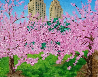 The El Dorado and Central Park Cherry Blossoms - Fine Art Paper