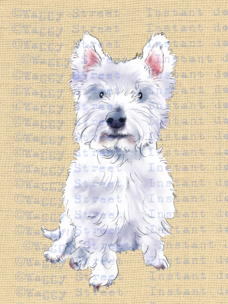 Dog breeds Printable dog breed clip art Westie dog clipart watercolor download graphics West highland white. PNG Transparent Commercial