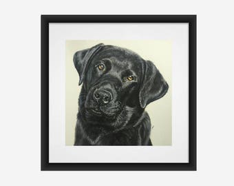 Black Labrador Retriever Fine Art Giclee Print by Gillian Ussher Art // Black Lab // Dog Art // Labrador Gift // Signed and Numbered