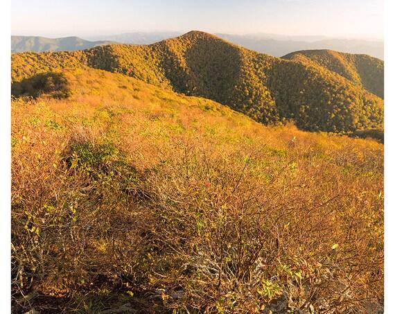 October Golden Hour on Rocky Top