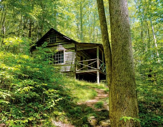 Avent Cabin in Spring