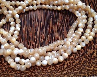 4mm Yellow Shell beads  (G 416)