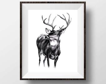 deer drawing etsy