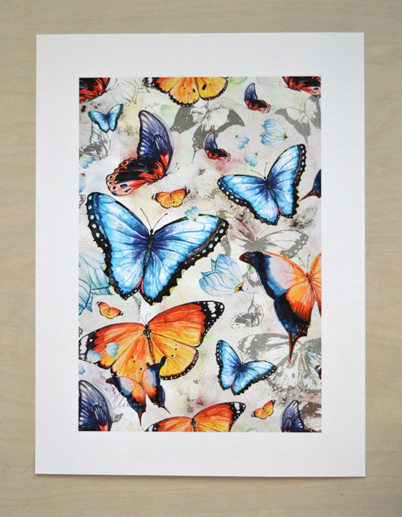 Butterfly art print by original watercolor illustrations image 0
