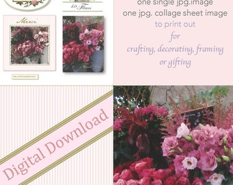 French Flowers Paris Digital Downloads: One single image and one collage sheet gift tags