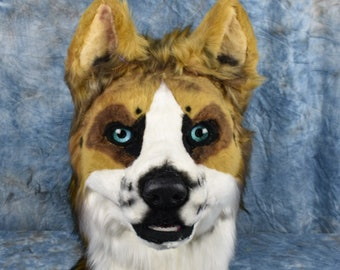 Barnaby -Mutt Dog Fursuit partial