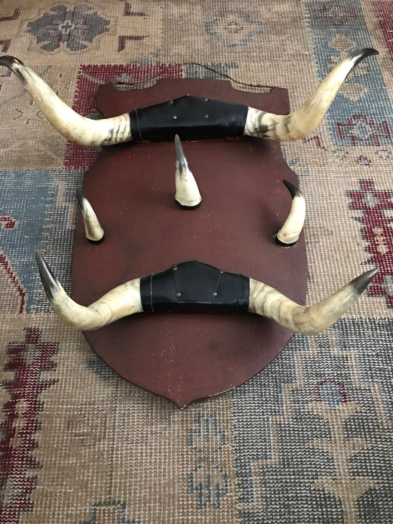 Antique Horn Coat Rack Adirondack Trophy Lodge Cow Horn  Alpine Ski house Shield Camp French Country English Country Taxidermy