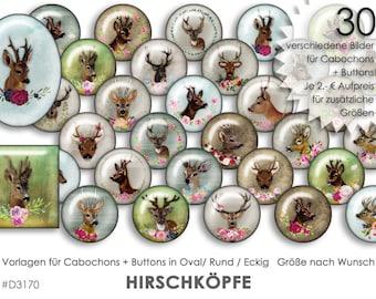 Cabochon Vorlagen Cabochonvorlagen HIRSCHKÖPFE