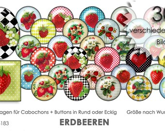 ERDBEEREN - 30 Cabochonvorlagen Cabochon Vorlagen digital Download Buttonvorlagen Bilder für Schmuck Buttons Cabochon template Collage