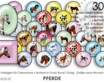 PFERDE PONYs 30 Cabochonvorlagen Cabochon Vorlagen digital Download Buttonvorlagen Bilder für Schmuck Buttons Cabochon template Collage