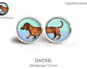 DACKEL earrings stud earrings Brisuren ear jewelry OHRSTECKER