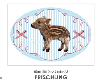 FRISCHLING Ironing picture wild boar piglet ironing picture ironing pictures Ironing foil ironing patches appli fabric picture T-shirt picture