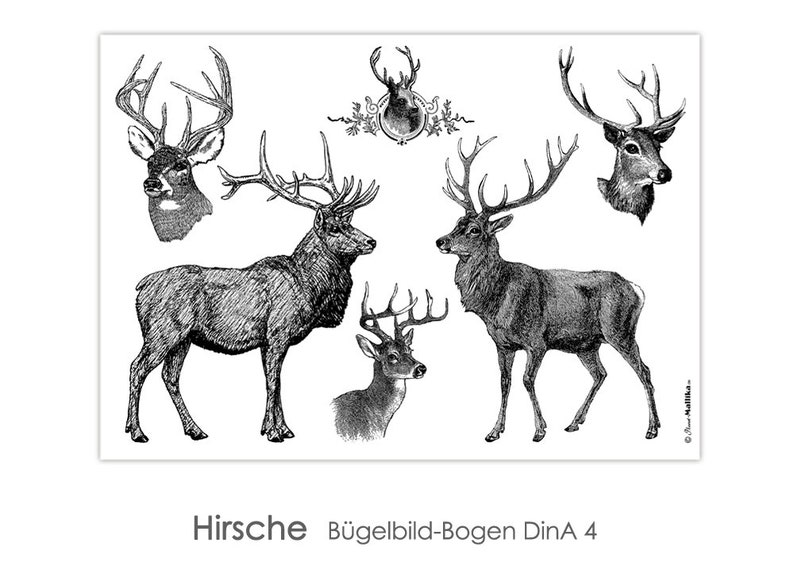 HIRSCH Deer Ironing Pictures DinA4-Bow Ironing Pictures image 0
