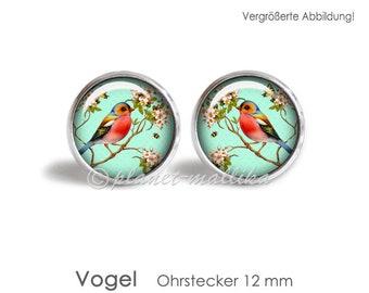 VOGEL earrings earrings hanging earrings Brisuren earrings OHRSTECKER jewelry cabochon jewelry ring necklace keychain bird birds
