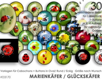 MARIENKÄFER Ladybug 30 Digital Cabochon Templates Cabochon Templates Digital Download Button Templates Pictures Jewelry Cabochon Buttons Collage
