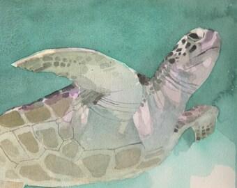 Sea Turtle  /  print