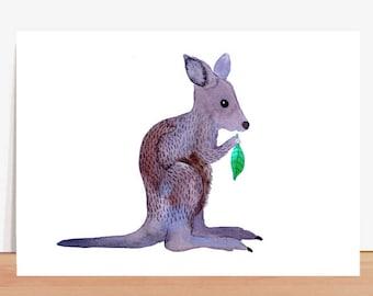 Postcard *kangaroo*