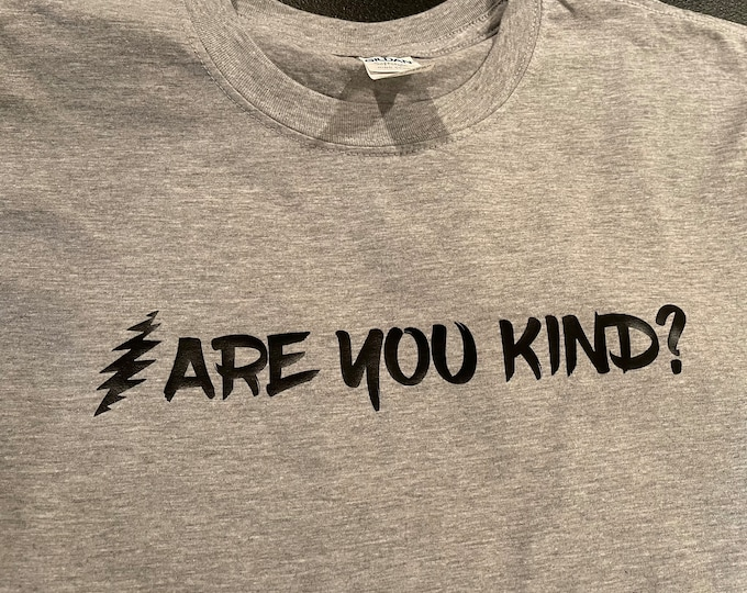 Are You Kind? Short Sleeve Adult Unisex T-Shirt Dead and Company Grateful Dead