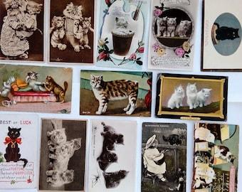 Set of 13 vintage cat postcards cat card
