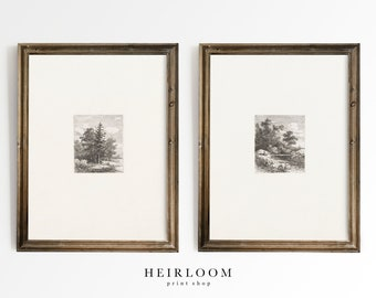 Vintage Etching Print Set | Dutch Art | MAILED ART PRINTS | Forest Etchings