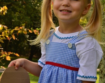 Dorothy outfit from Wizard of Oz