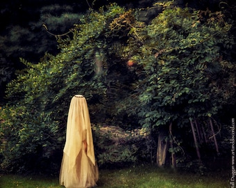"Fine Art Photography Print ""Veiled in the Garden"""
