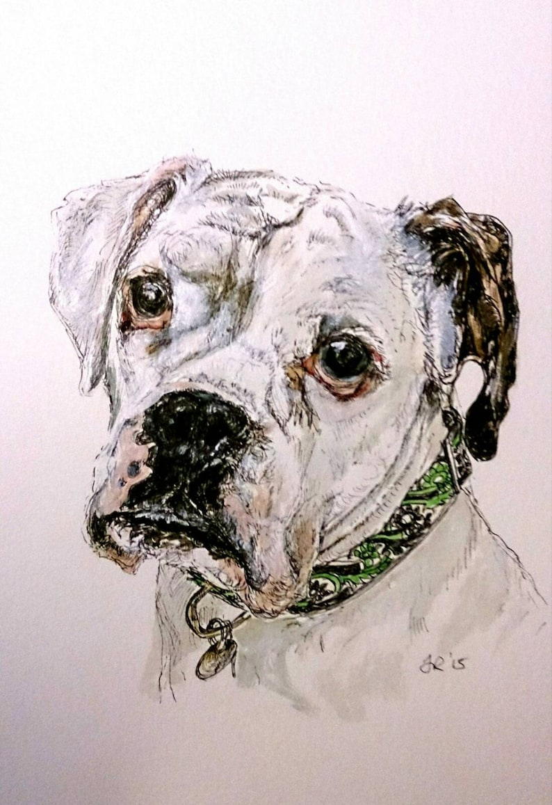 Custom A4 Pet Portrait Drawing/Painting in Ink & Watercolour image 0