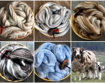100 grams spinning Blue Faced Leicester Roving White BFL Top felting or weaving great for dyeing