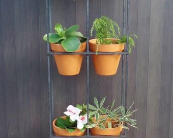 Vertical garden. Handmade steel frame with six terracotta pots.