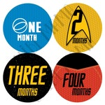 Free Shipping to US! Star Trek Monthly Stickers, Star Trek Milestone, Baby Star Trek Sticker, Baby Movie Gift, Baby Geek Gift