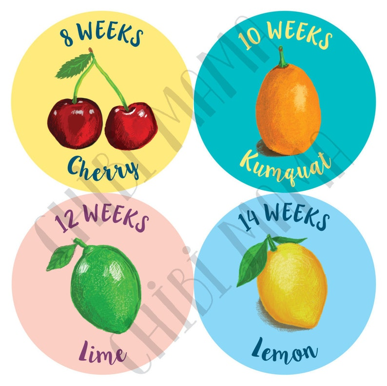 Free Shipping to US Pregnancy Stickers Belly Stickers image 0