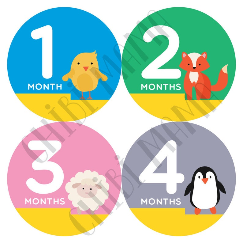Free Shipping to US Baby Month Stickers Colorful Stickers image 0