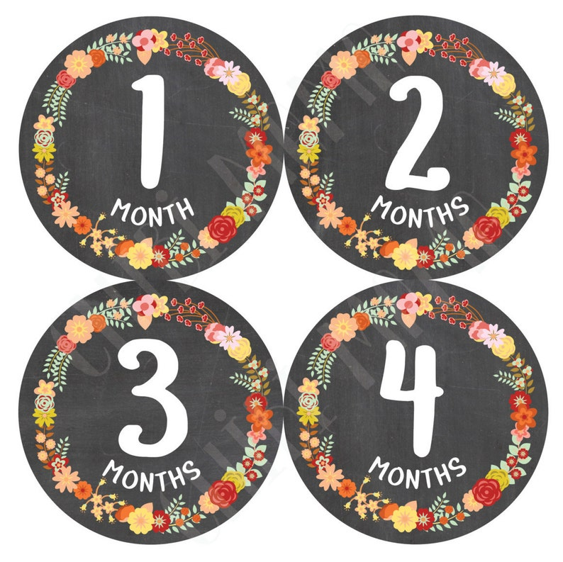 Free Shipping to US Baby Floral Stickers Monthly Flower image 0