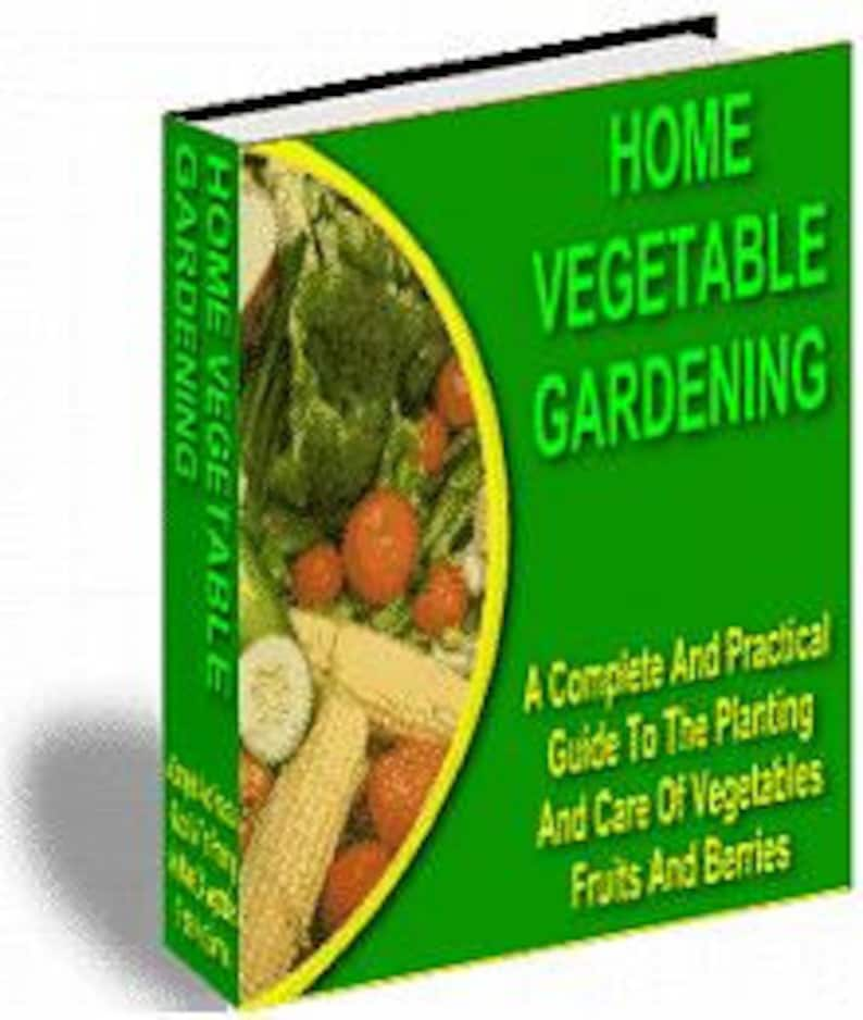 Home Vegetable Gardening image 0
