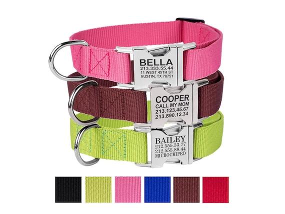 pet collar dog collar personalized dog collar custom dog etsy