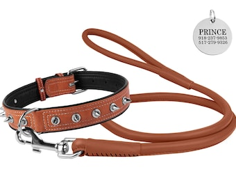 Spiked Dog Collar and Leather Leash Set, Large Dog Collar, Dog Collar Leather, Pitbull Collar, Dog Collar Spike 4 or 6 foot Leash