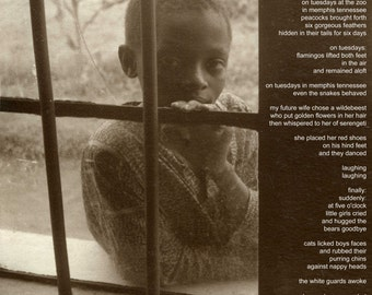 Poetry & photography poster: Cages