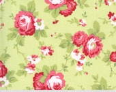 Sophie Yardage by Brenda Riddle of Acorn Quilts for Moda Fabrics 18710 15 Main Floral Sprout