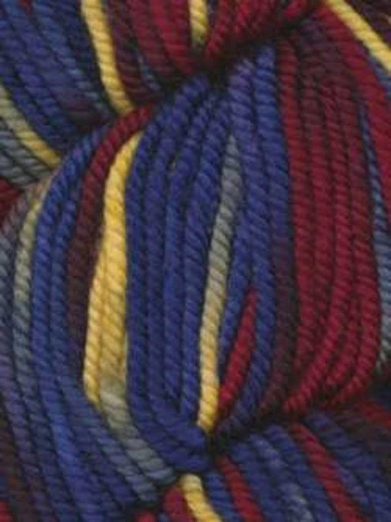 Araucania Huasco Chunky Hand-painted Superwash Merino image 0