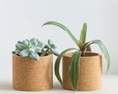 Echo cork planter