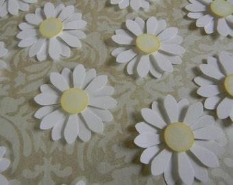 Die Cut 3D White Shasta Daisies (Set of 12) -