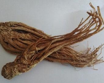 Master Root