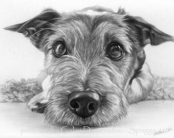 Custom drawn pencil portraits ***any subject of your choice**